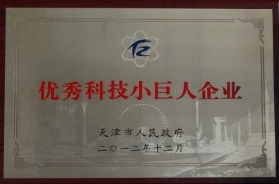 "Award ZhongZhi Co. ""Tianjin City Excellent Technology Small Colossus"""